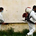 Continuă dezinsecţia la sol în municipiul Giurgiu. S-a intrat şi la subsoluri